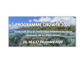 CIB2WEB 2020: PROGRAMME SCIENTIFIQUE